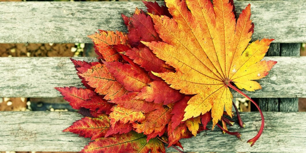 Five surprising Autumn songs